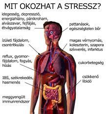 stressz megint
